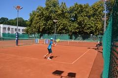 AMTENIS WTK 06 2018 (102) (AMTENIS / Klub TENISOWY Warszawa) Tags: wtk pzt wozt amtenis przeztenisdozdrowia tenisbielany bielany