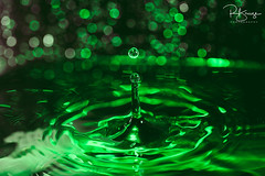 Splosh (breezo2002) Tags: splash splosh water drop waterdrop miops miopsplash plutotrigger flash gel ocf offcameraflash highspeed