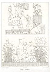 Swamp hunting from Histoire de l'art égyptien (1878) by Émile Prisse d'Avennes (1807-1879). Digitally enhanced by rawpixel. (Free Public Domain Illustrations by rawpixel) Tags: egyptian otherkeywords anillustrationoftheegyptian ancestry ancient ancientegyptian ancientegyptianart antique archaeological archeology architecture art artwork carving cc0 design designing drawing dynasty egypt egyptiankingdom egyptien egyptology empire gods handdraw handdrawn histoiredelartã©gyptien historical history hunting illustration kingdom mythology old oldfashioned outlines outlinesfromtheantique pattern pharao psd publicdomain romans sepia sketch story swamp traditional vintage worker worship ãmileprissedavennes histoiredelartégyptien émileprissedavennes
