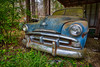 It's Not Up To Us (Wayne Stadler Photography) Tags: georgia preserved retro abandoned classic rustography automotive overgrown vehiclesrust rusty junkyard vintage oldcarcity rustographer derelict white