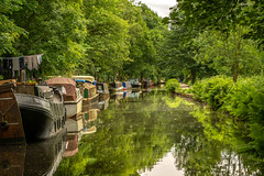 _DSC.0680 - The Rochdale Canal, Hebden Bridge (SWJuk) Tags: hebdenbridge england unitedkingdom swjuk uk gb britain yorkshire westyorkshire calderdale canal rochdalecanal water still calm flat reflections trees bushes shrubs green boats narrowboats 2018 jun2018 spring nikon d7100 nikond7100 nikkor70200mm rawnef lightroomclassiccc
