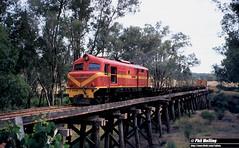 3509 X1028 Nannup 23 February 1983 (RailWA) Tags: railwa philmelling westrail 1983 x1028 nannup