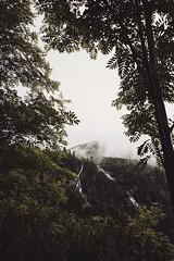 76FB0E27-7CE7-4EEB-BDB0-1308ABD8F5EC (jullietserov) Tags: mountain mountains poland zakopane lake nature forest water fog waterfall rain clouds trees bridge