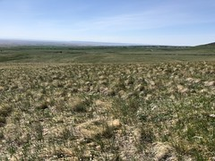 Sweetgrass Hills Montana 2018 (jasonwoodhead23) Tags: usa hiking westbutte montana sweetgrasshills sweetgrass hills butte rocks