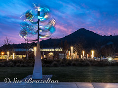_DSC7741 (Sue Brazelton Photography) Tags: art california december2017 library morganhill night places