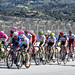 Mark Cavendish leads a large group of riders up the Rahal Straight at Laguna Seca