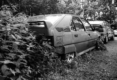 Citroën BX GTi 16V mk1 / Xantia V6 Activa (Skylark92) Tags: nederland netherlands holland private prive collection collectie citroën bx gti 16v mk1 xantia v6 activa