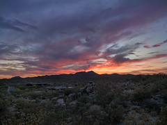 Desert Dessert - Southwest United States (mattybecks3) Tags: az arizona desert family southwest sunset tucson visittucson home landscape colors evening ngc natgeo