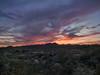 Desert Dessert - Southwest United States (mattybecks3) Tags: az arizona desert family southwest sunset tucson visittucson home landscape colors evening ngc natgeo