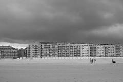 _MG_0900 (alouata) Tags: plage beach sable sand braydune niewpoort france belgique belgium dune noiretblanc mer merdunord vent vague nuage wave cloud