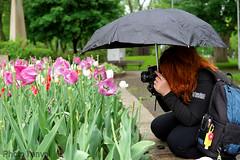 Passionnée, même sous la pluie (photolenvol) Tags: passion photo photographe lynechantalphotographie
