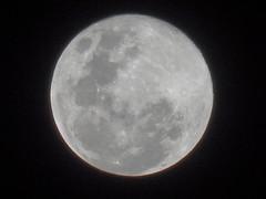 DSC09228 Lua Cheia (familiapratta) Tags: sony dschx100v hx100v iso100 natureza lua céu nature moon sky