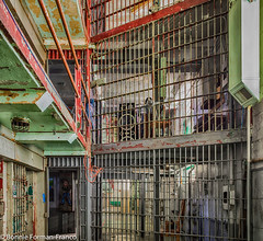 20171120_LANCASTER and WV_20171120-BFF_5084WV Penitentiary_HDR (Bonnie Forman-Franco) Tags: penitentiary abandoned abandonedphotography abandonedprison abandonedpenitentiary prison prisoncell imprisoned jailbed jailtoilet westvirginia westvirginiapenitentiary westvirginiaprison moundsville jailblocks photoladybon bonnie photography photographybywomen photographer hdr prisonarchitecture nikon nikonphotography nikond750 red green