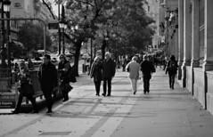 Transeúntes (Jose Rahona) Tags: calle street urbano urban gente people avenida avenue metro subway arboles trees farolas ciudad city