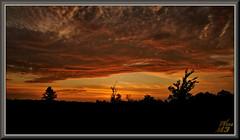 A final wink (WanaM3) Tags: wanam3 sony a700 sonya700 texas houston elfrancoleepark park outdoors vista landscape twiligth dusk clouds redsky sunset