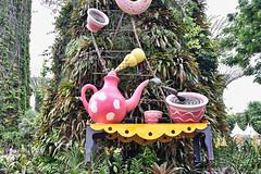 Children's Festival (chooyutshing) Tags: childrensfestival supertreegrove gardensbythebay baysouth marinabay singapore