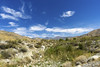 Whitewater Preserve Landscape (johngoucher) Tags: approved whitewaterpreserve coachellavalley california nature outdoors sonyimages sonyalpha desert sky palmsprings adventure travel hiking landscape field mountains openskies clouds whitewaterriver
