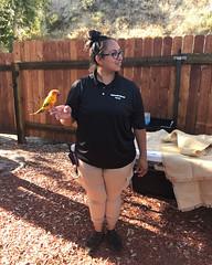 016 Pretty Bird (saschmitz_earthlink_net) Tags: 2018 california angelesnationalforest losangelescounty sylmar reptacularranch kevinjessicawedding