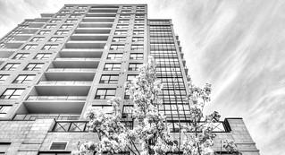 vertical density