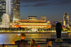 Marina Bay, Singapore -7746 (Matty 8o) Tags: singapore outdoor outdoors vacation holiday travel travelling canon canon700d 700d lens dslr photography photos photo photograph photographer marina bay marinabay canon1855mm 1855mm 1855 beautiful light lights night nightshots shot dark view long exposure longexposure city love gardens gardensbythebay asia tourism tourist nightphoto nightphotography hobby