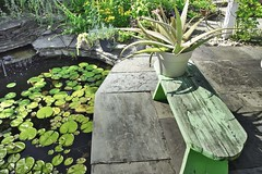 Claire's Pond (Dragonsilk) Tags: landscape pond flowers water tranquil nature flowing fountain bench lilypads