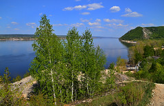Birches and Volga (МирославСтаменов) Tags: russia zhiguli volga mogutova hill slope mountain river overlook