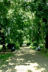 2017 - Open Square Garden - Saturday - 02a - St Mary Magdalene Church and Garden-7127 (Out To The Streets) Tags: 2017 20170617 europe june2017 london opengardensquares opengardensquares2017 opengardensquares2017sunday stmarymagdalenechurchandgarden uk unitedkingdom bench garden green path trees