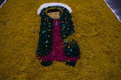 MISSA DE CORPUS CHRISTI (P. Nossa Senhora do Rosário de Fátima) Tags: 031 05 596 fernando fotografia storielli amador antonio antônio bueno cecilia christi cinco comunidade confecção corpo corpus cristo de dezoito diocese divino do dois e espirito ferreira festa festividade fátima jardim josé jovens juventude machado maio mil nossa osasco padre paróquia pascom paulo piratininga pnsrf r rosário rua santa santo senhora solene solenidade são tapete trinta um