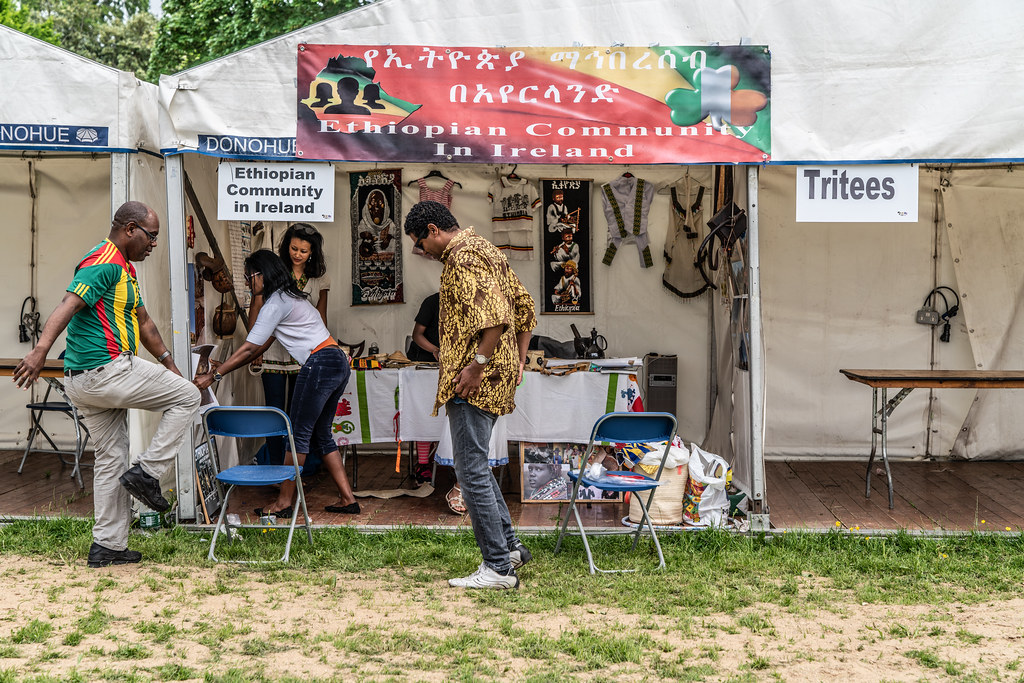 AFRICA DAY 2018 IN DUBLIN [FARMLEIGH HOUSE - PHOENIX PARK]-140516