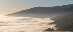 The Great Sky Washes Over Like The Sea (sbisson) Tags: fog mountains slopes trees forest lucia california bigsur evening light clouds