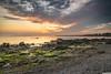 Seapoint series 9 June 2018 (PeterJJC-Ireland) Tags: sonyalpha sunrise seascapephotography landscape dawn longexposure seapoint sonyilce7rm3 dublin ireland sea countydublin ie