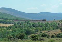 333-106 19.6.2005 (Mariano Alvaro) Tags: directo burgos ferrocarril tren talgo train trenes sierra montañas irun bilbao