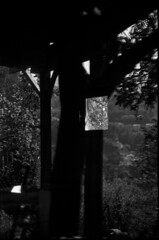 Mise en abyme (Rachelnazou) Tags: caffenol blackwhite minolta film fomapan analog argentique