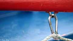 Red and blue (patrick_milan) Tags: ring red rouge bleu blue ship boat rope