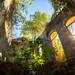 Abandoned Portugese Building - Gorongosa National Park, Mozambique