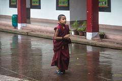 Sikkim 2017 (Pucci Sauro) Tags: india sikkim gangtok