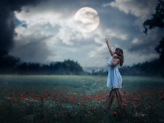kiss the Moon (agirygula) Tags: moon night puppy puppyfield teddy moonlight fullmoon kid childhood girl sky ble blue clouds
