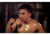 Kick Boxing 18 (rantbot66) Tags: thailand thaiboxing muaythai koh samui kohsamui contenders