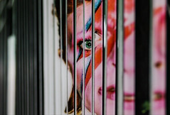 David Bowie Gate Illusion: Aladdin Sane (horizontal) (Joshua Mellin) Tags: bowie davidbowie streetart illusion gate nyc newyorkcity aladdinsane rock artist music visage face davidbowieis brooklynmuseum manhattan 42bondst lightning bolt lightningbolt 70s glam lips eye eyes sliced cut concert street art museum brooklyn starman blackstar black fence color pink blue red orange mouth nose 42bondstreet bondstreet new york city newyork newyorknewyork newyorkcitynewyork scottvandervoort streetartist famous musician live summer 2018 rip date tickets exhibit soul ghost alive lives living best favorite singer era green noho soho