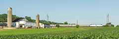 18-3524cr 3x1 (George Hamlin) Tags: pennsylvania west gap railroad passenger train amtrak atk 605 keystone service amfleet coaches siemens acs64 sprinter electric locomotive overhead catenary 614 farm barn silos crop plants agriculture corn field sky green blue photo decor george hamlin photography