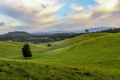 Rolling Hills (gijssmulders) Tags: rollinghills green clouds landscapephotography landscape athertontablelands yungaburra fields fnq farnorthqueensland