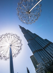 The Burj (\Nicolas/) Tags: tower burj khalifa dandelion structure record dubai dubaï stages