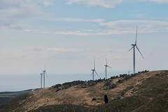 Wind turbines on old Greek village (harunkucuk) Tags: turbines aegean turkey ruins village blue brown