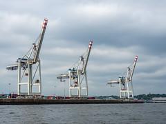 LR Hamburg 2018-5190393 (hunbille) Tags: birgittehamburg2018lr hamburg germany harbour elbe river three shipyard ship yard crane