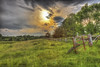 Afternoon in the country (Pearce Levrais Photography) Tags: farm field wildflowers sky fence tree forest cloud sun landscape canon 7d markii outside outdoor nature summer deciduous grass gate metal wood hdr