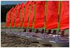 L'équipe des rouges -  The red team (diaph76) Tags: france extérieur lelavandou var provence plage beach optimist écoledevoile sailingschool rouge red alignement