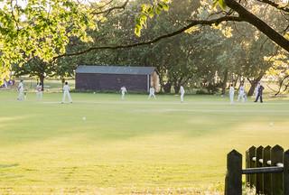 Portishead Junior Cricket.