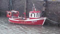 Starina B128 (divnic) Tags: ni northernireland countydown ards ardspeninsula ballywalter ballywalterharbour boats fishingboats sailingboats rowingboats sea irishsea water harbour ireland b295laura b295 laura bck45guillemot bck45 guillemot b956 seaweed fishing creelpots lobsterpots fishingequipment lobstertrap b128 starina starinab128
