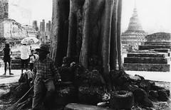 (Sonny Terranova) Tags: nikon fm10 film black white ilford hp5 asia thailand sukhothai trees ruins temple tourists rest work shadow