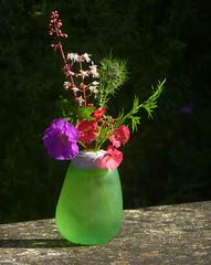 Mini posy (Durley Beachbum) Tags: odc flowers vase arrangement june posy